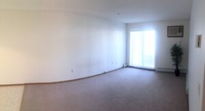 EARLY AUGUST Move-in for 2 Bedroom in Lakewood - Pet Friendly!