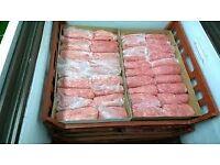 Raw Chicken Dog Food - Frozen