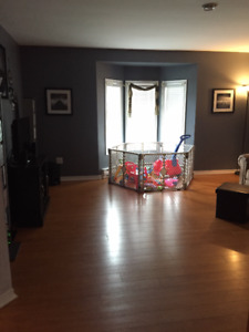 3 BR House plus Rec Room available Sept. 1st  - East End