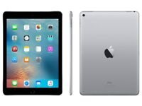 IPad Pro 32gb cellular with Apple Pencil , not iPhone, iPod or Samsung.
