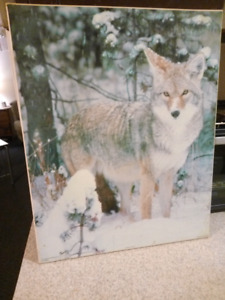 Painting of wolf