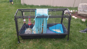 Large cage for guinea pigs or other small animals