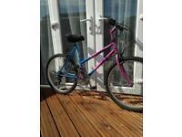 Small Ladies Adult Mountain Bike
