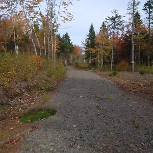 40acres + / -  for sale 4K from tatamagouche