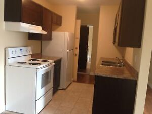 Renovated Two Bedroom unit! Beautiful!