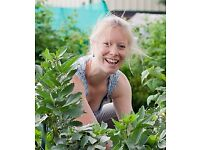 RHS qualified, friendly and reliable Gardener
