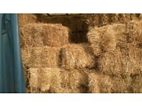 Hay -conventional bales -2017 crop- £3.75 - Lawford Essex -delivery available
