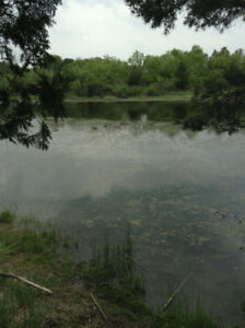UNIQUE PETERBOROUGH LIFTLOCK AREA ACREAGE WITH POND