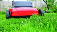 Grass Cutting In South Dale