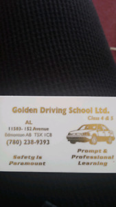 Professional Driving Instructor
