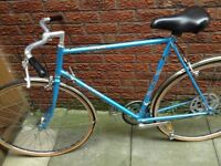 Raleigh arena Gt retro bike 23 1/2 inch frame very good condition
