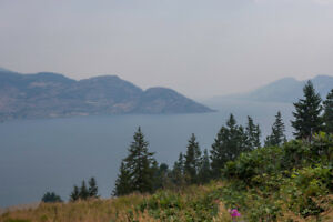 FOR SALE: 5875 Victoria Street, Peachland, V0H 1X4