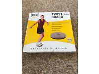 Everlast Twist Board