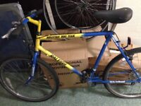 Raleigh team mountain bike