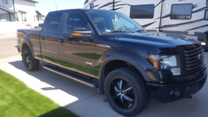 2011 ford ecoboost f150 fx4