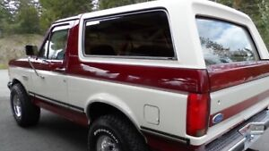 Looking for clean bronco