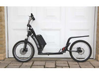 Electric Scooter, Dog Scooter, Adult, Kick Scooter, Kick Bike, eBike, (in Hotwells)