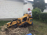 stump grinding services offered