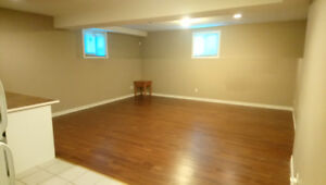 Large beautiful open concept apartment, international students