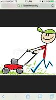 Lawn mowing, weed spraying, & trash removal