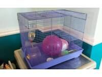 Big purple hamster cage with accessories