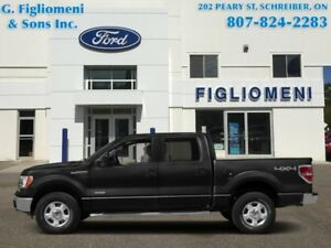 2014 Ford F-150 FX4  - Leather Seats - POWER MOONROOF - Navigati