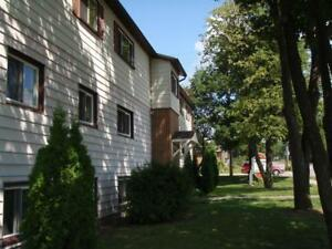 Willow Properties  - 2 bedroom All inclusive Apartment for Rent