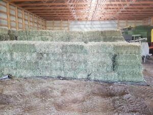 Great small square bales for Horse hay