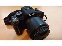 Panasonic LUMIX DMC-G2K 12.1MP Digital Camera with 14-42mm Lens)