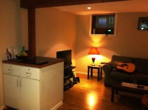 GREAT NEW ROOM, ALL INCLUSIVE, 5 APPLIANCES, DOG OK, CENTRAL