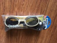 doggles eyewear for dogs with sensitive eyes
