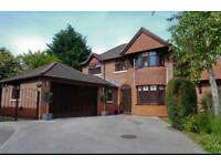 4 bed detached family home in Willaston, (between Nantwich and Crewe) available Aug 17