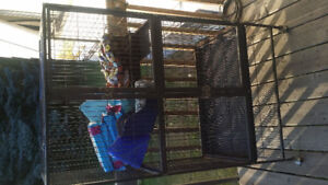 2 story cage with accessories