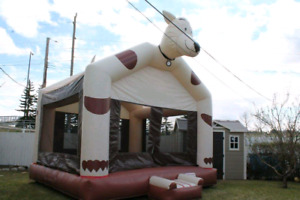 Bouncy Houses (3)