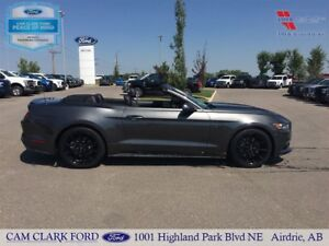 2016 Ford Mustang GT Black Edition 5.0L V8 Convertible