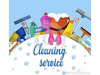 Lorraine's cleaning services (cleaner)