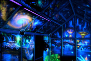 Stunning Glow In The Dark Murals Perfect for Tv Room or Backyard