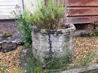 Various garden pots