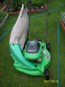 Lawnboy 4 cycle with grass catcher.