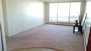 Beautiful 12th Floor Downtown Pet Friendly 2 Bedroom for July!