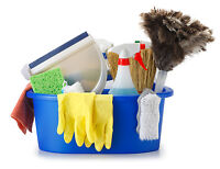 Apartment Cleaner Wanted