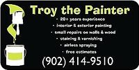 Troy the Painter Painting and small repairs