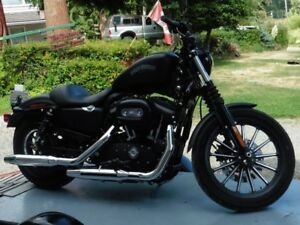 2012 HARLEY SPORTSTER IN MINT CONDITION