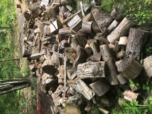 Firewood - Seasoned Hardwood Ends/Chunks - Great for Camping