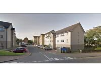 Lovely flat to share in Ellon