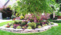 Landscaping Services- Great prices and better results