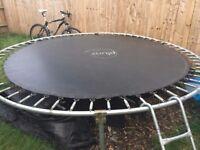 Plum Hurricane trampoline
