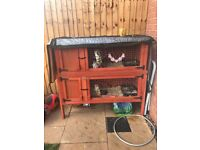 Double bunny hutch to keep rabbits separate 4ft