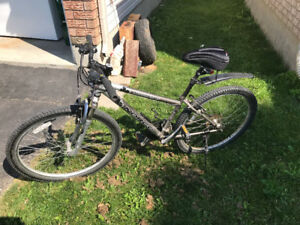 Norco Mointaineer bike in good condition