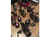 Fishing reel Mixed. PRICE upon request 12 in total